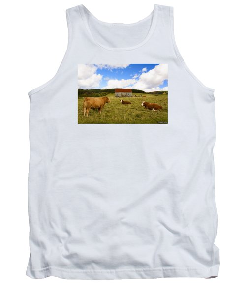 The Cows Of Mabou Tank Top by Ken Morris