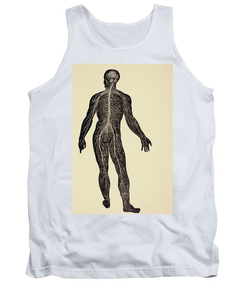 The Human Nervous System. From Virtue S Tank Top