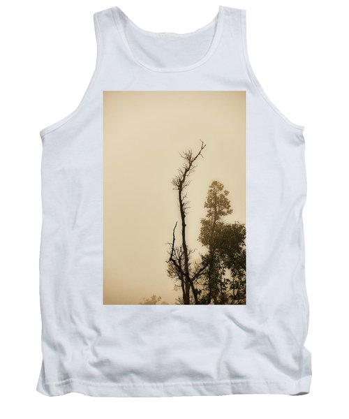 The Trees Against The Mist Tank Top by Rajiv Chopra