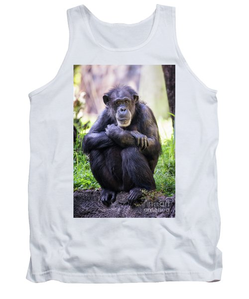 Thoughtful Chimpanzee  Tank Top by Stephanie Hayes