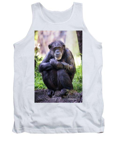 Thoughtful Chimpanzee  Tank Top