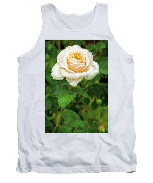 Virtue Of Pureness Tank Top by Ken Stanback