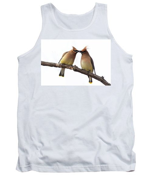 Waxwings In Love Tank Top by Mircea Costina Photography