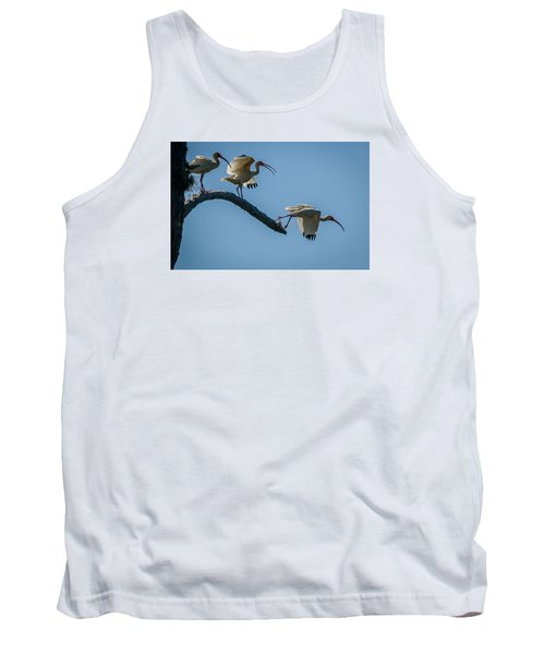 White Ibis Takeoff Tank Top by Tom Claud