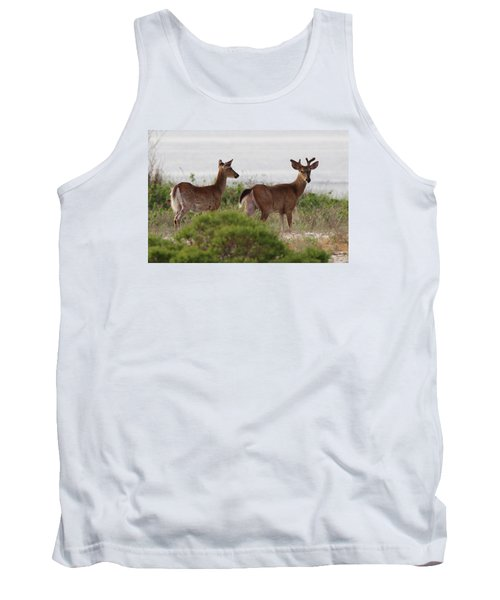 White Tail Deer Port Jefferson New York Tank Top