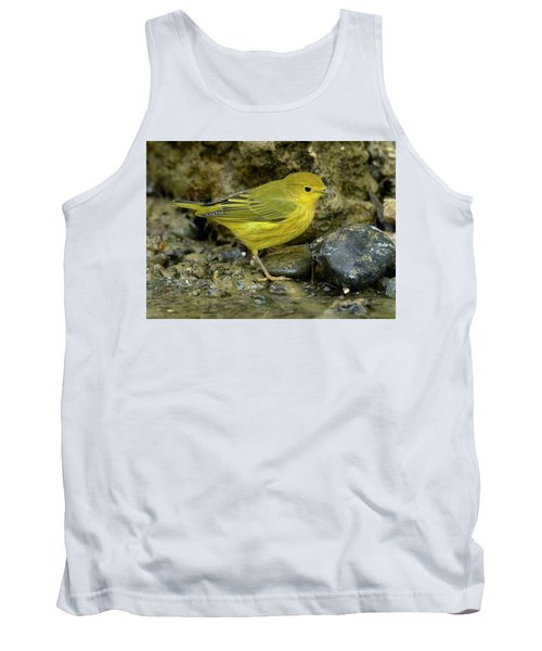 Tank Top featuring the photograph Yellow Warbler by Doug Herr