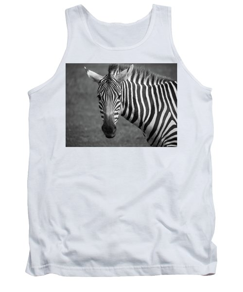 Zebra Tank Top by Trace Kittrell