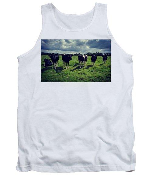 Dairy Heifers Tank Top