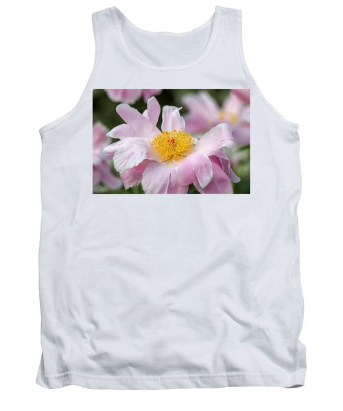 Delicate Pink Peony Tank Top