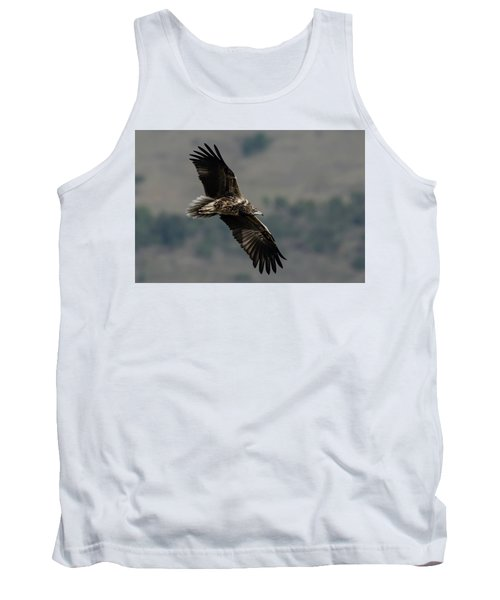 Egyptian Vulture, Sub-adult Tank Top