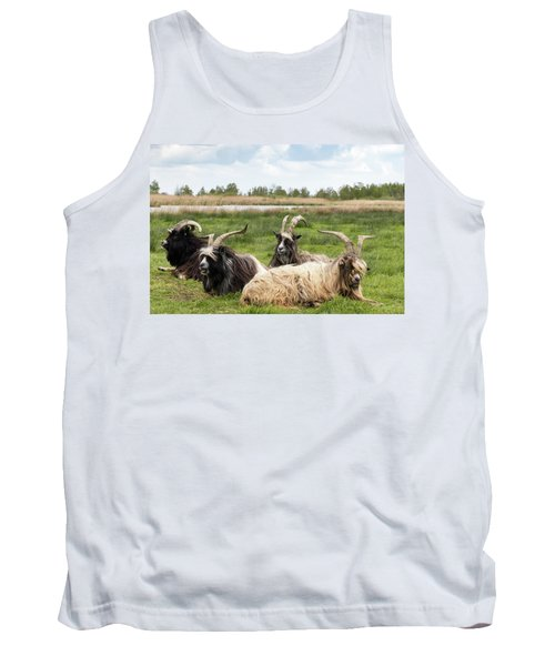 Tank Top featuring the photograph Goats  by Anjo Ten Kate
