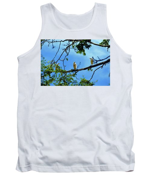 Ibis Perch Tank Top