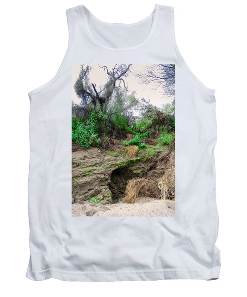 January Day  In The Vekol Wash Tank Top