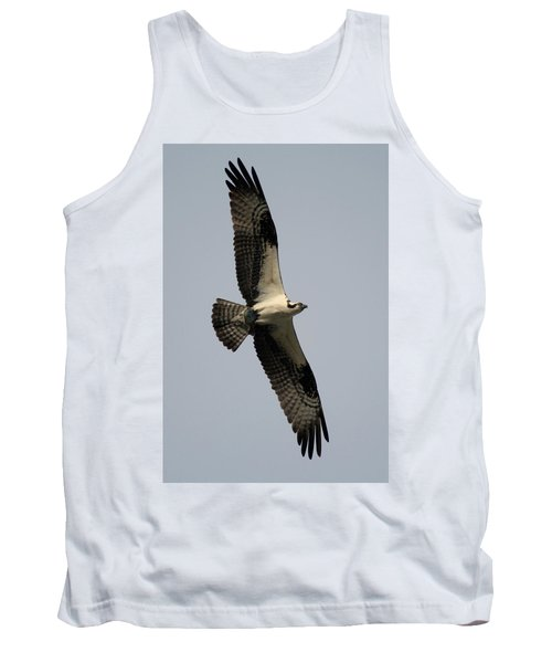 Osprey With Fish Tank Top