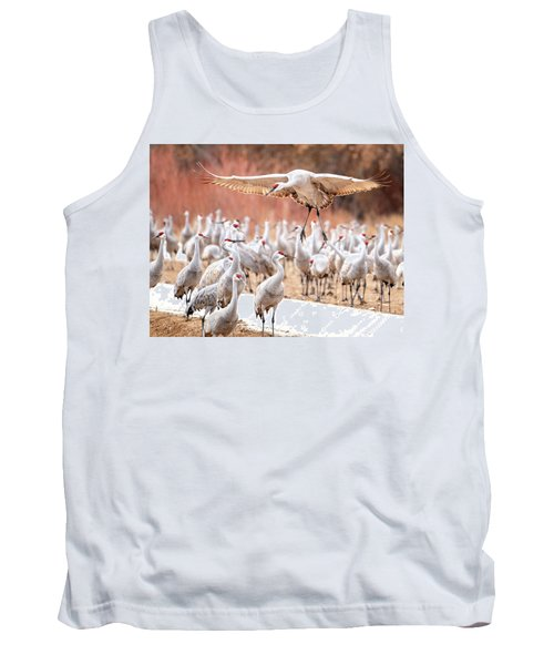 Ready Or Not, Here I Come -- Sandhill Cranes Tank Top