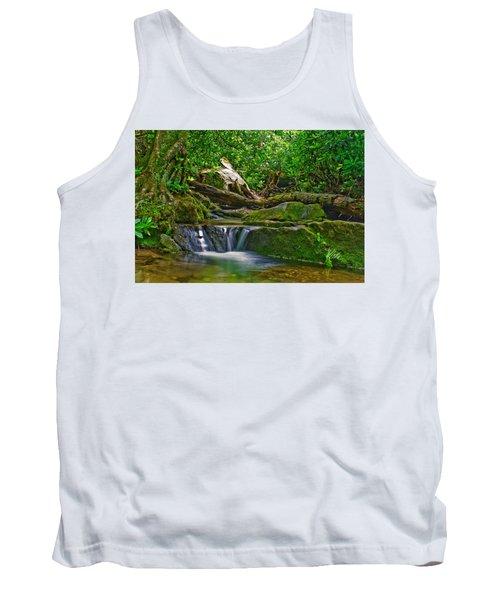 Sims Creek Waterfall Tank Top