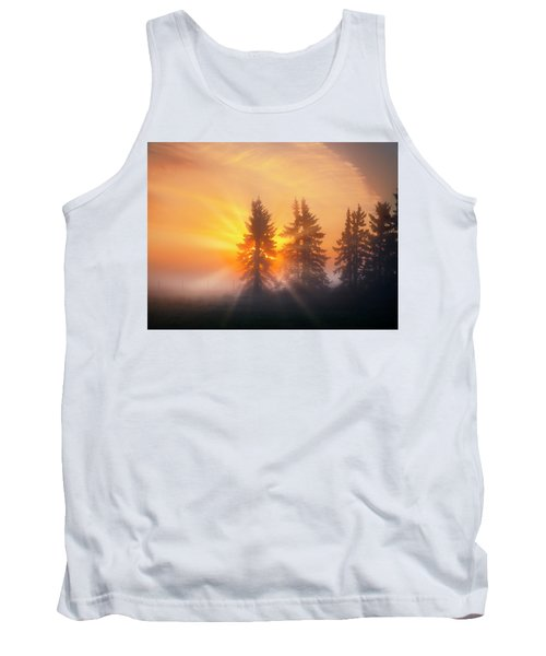 Spruce Trees In The Morning Tank Top