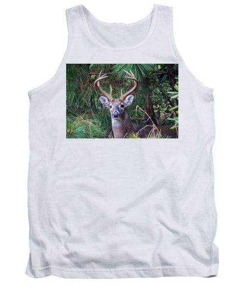Whitetail Deer Tank Top