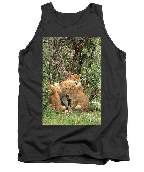 Masai Mara Lion Cubs Tank Top by Aidan Moran
