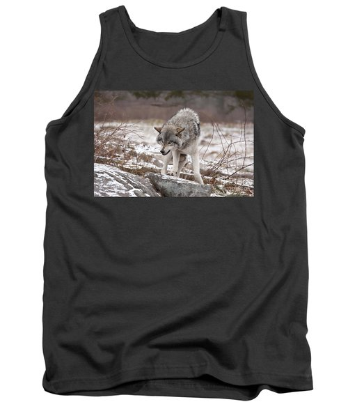 Tank Top featuring the photograph Adult Timber Wolf by Wolves Only