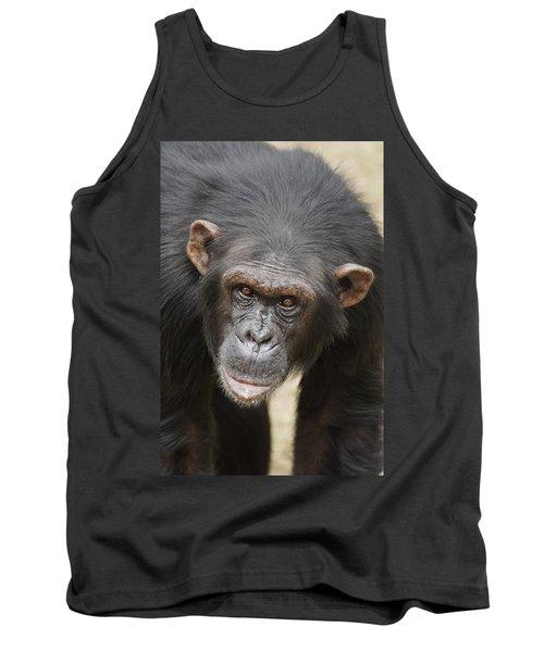 Chimpanzee Portrait Ol Pejeta Tank Top