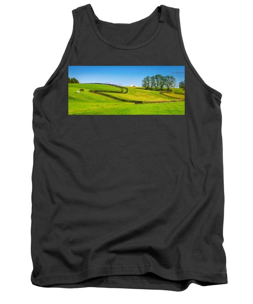Horse Farm Fences Tank Top by Alexey Stiop