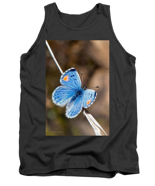 Sonoran Blue Tank Top