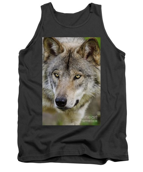 Timber Wolf Portrait Tank Top