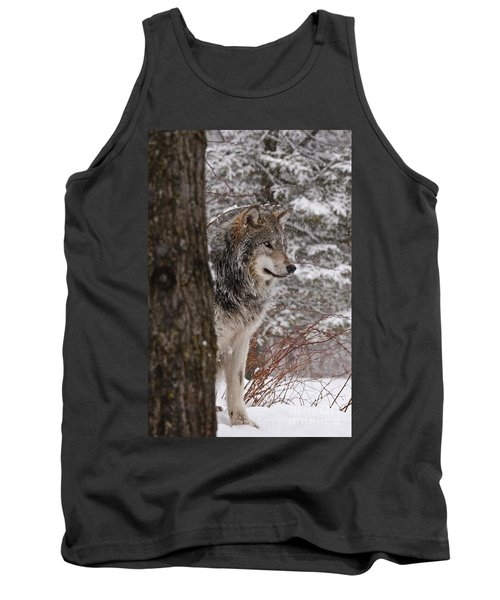 Timber Wolf Tank Top by Wolves Only