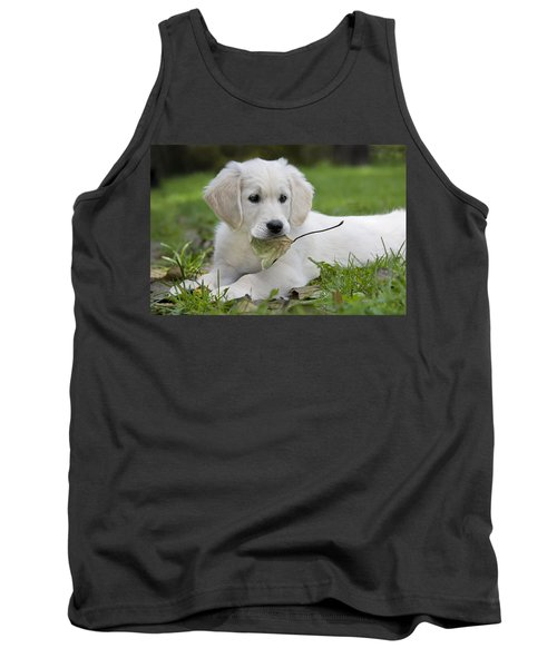 101130p064 Tank Top by Arterra Picture Library