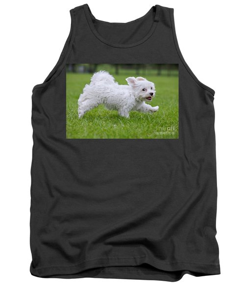 110801p130 Tank Top by Arterra Picture Library