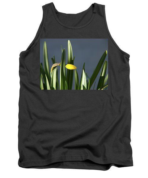 Tank Top featuring the photograph 1st Daff by Joe Schofield