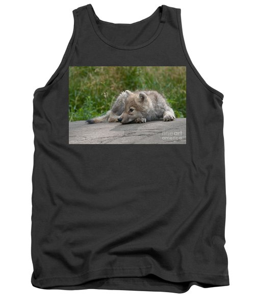 Arctic Wolf Pup Pictures Tank Top