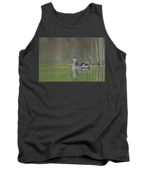 Female Mallard Duck In Small Marsh Pond Tank Top