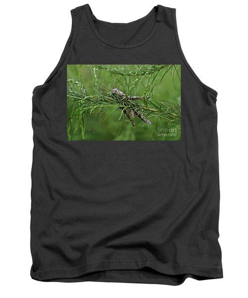 Tank Top featuring the photograph Grasshopper by Olga Hamilton