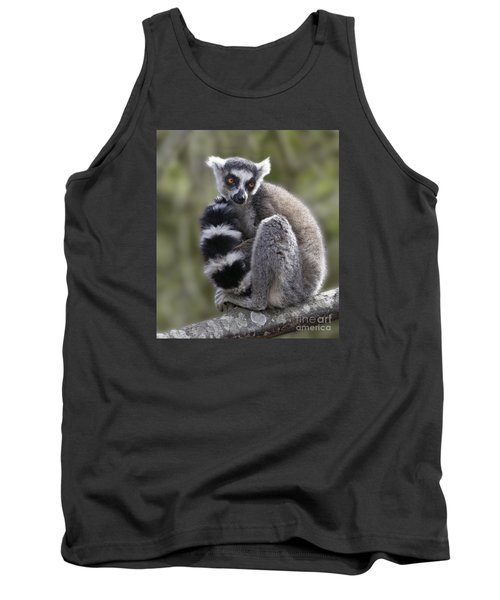 Ring-tailed Lemur Tank Top