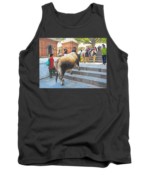 A Holy Cow Climbing Steps From Bagmati River In Kathmandu-nepal  Tank Top