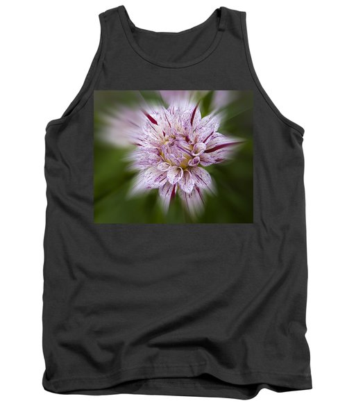 A Taste Of Wine Tank Top
