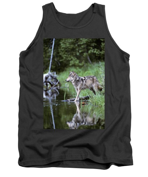 Adult Gray Timber Wolf Canis Lupus Tank Top