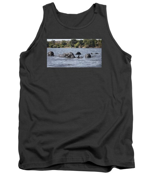 African Elephants Swimming In The Chobe River Tank Top