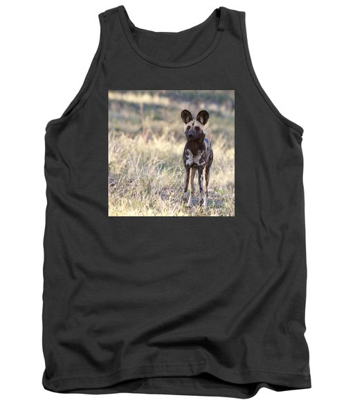 African Wild Dog  Lycaon Pictus Tank Top by Liz Leyden