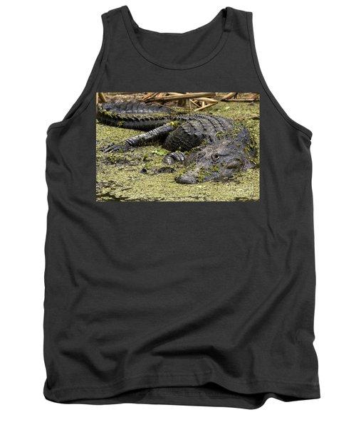 American Alligator Smile Tank Top