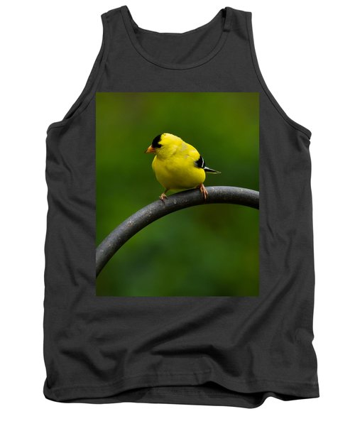American Goldfinch Tank Top