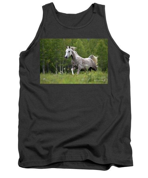 Arabian Dapple Grey Horse Galloping Tank Top