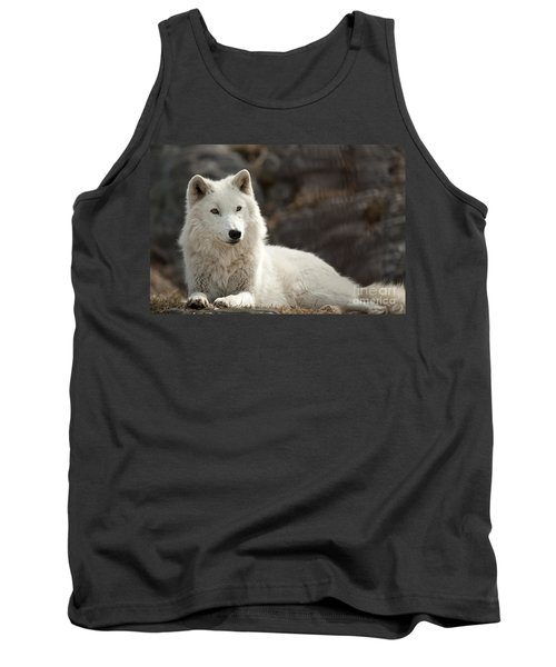 Arctic Wolf Adult Tank Top