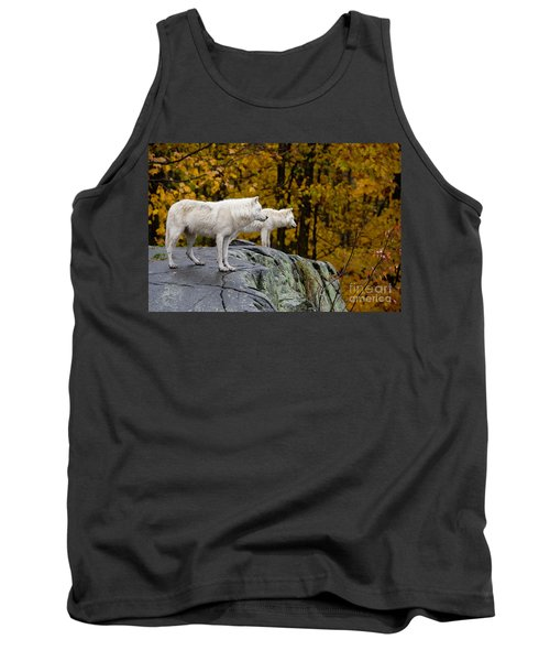 Arctic Wolf Pictures 930 Tank Top