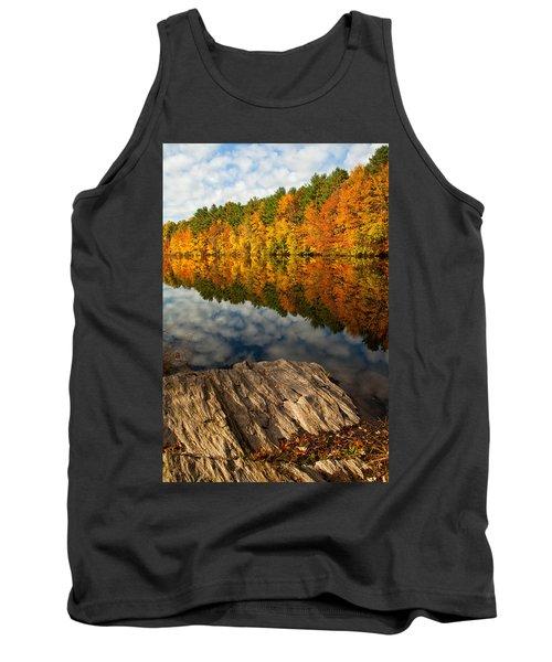 Autumn Day Tank Top by Karol Livote