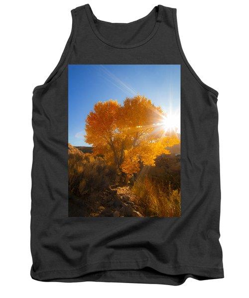 Autumn Golden Birch Tree In The Sun Fine Art Photograph Print Tank Top
