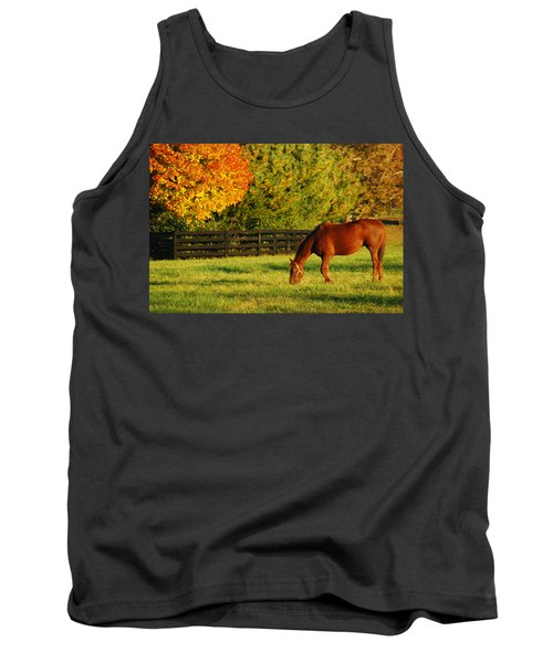 Tank Top featuring the photograph Autumn Grazing by James Kirkikis