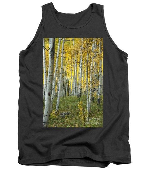 Autumn In The Aspen Grove Tank Top by Juli Scalzi